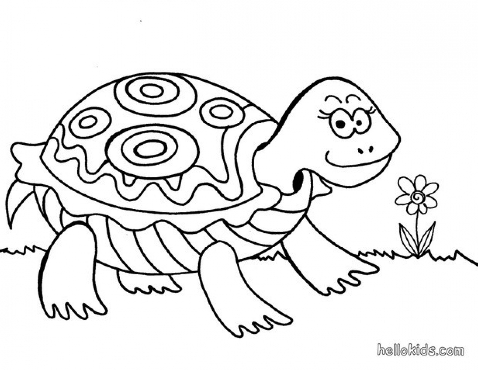 Kids Printable Turtle Coloring Pages Free Online P2s2s