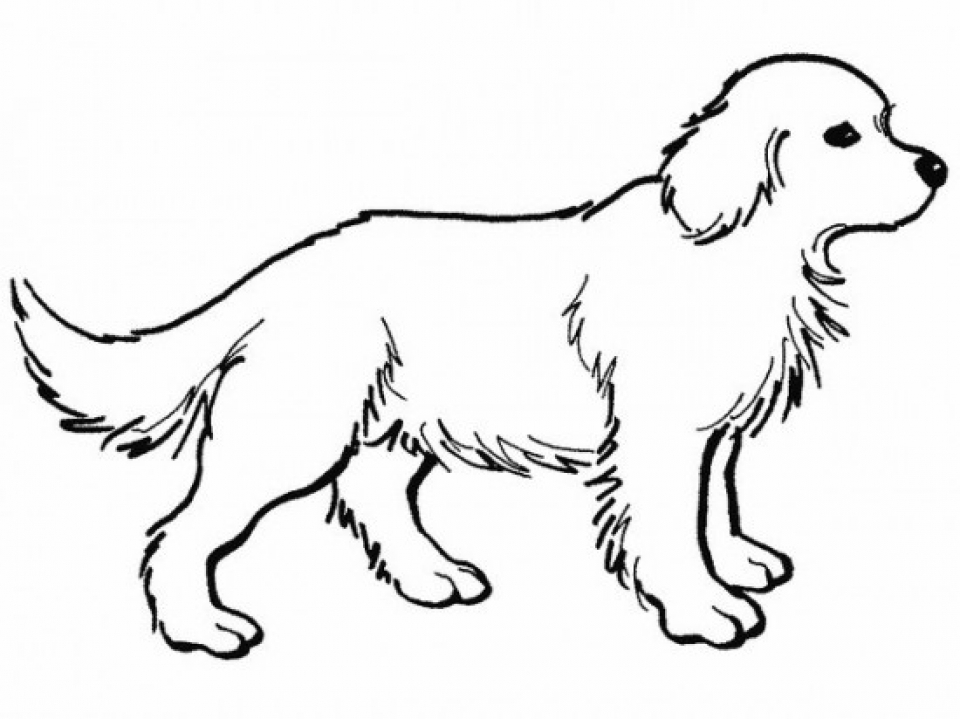Get This Online Coloring Pages Of Dogs 17433
