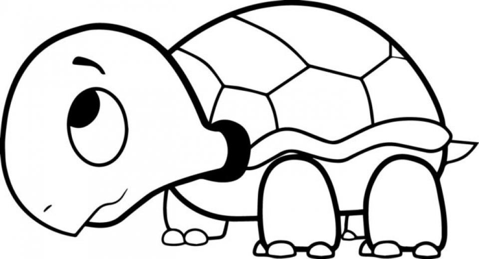 photo about Printable Turtle named Acquire This On line Printable Turtle Coloring Web pages rczoz !