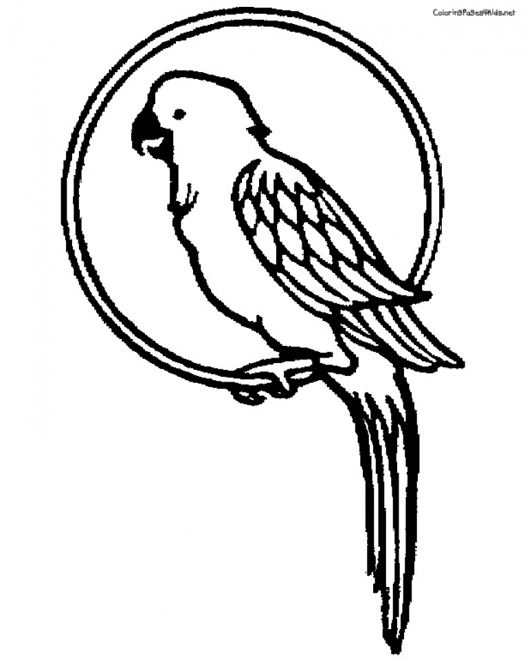 Get this parrot coloring pages free printable 9466 for Coloring pages parrot