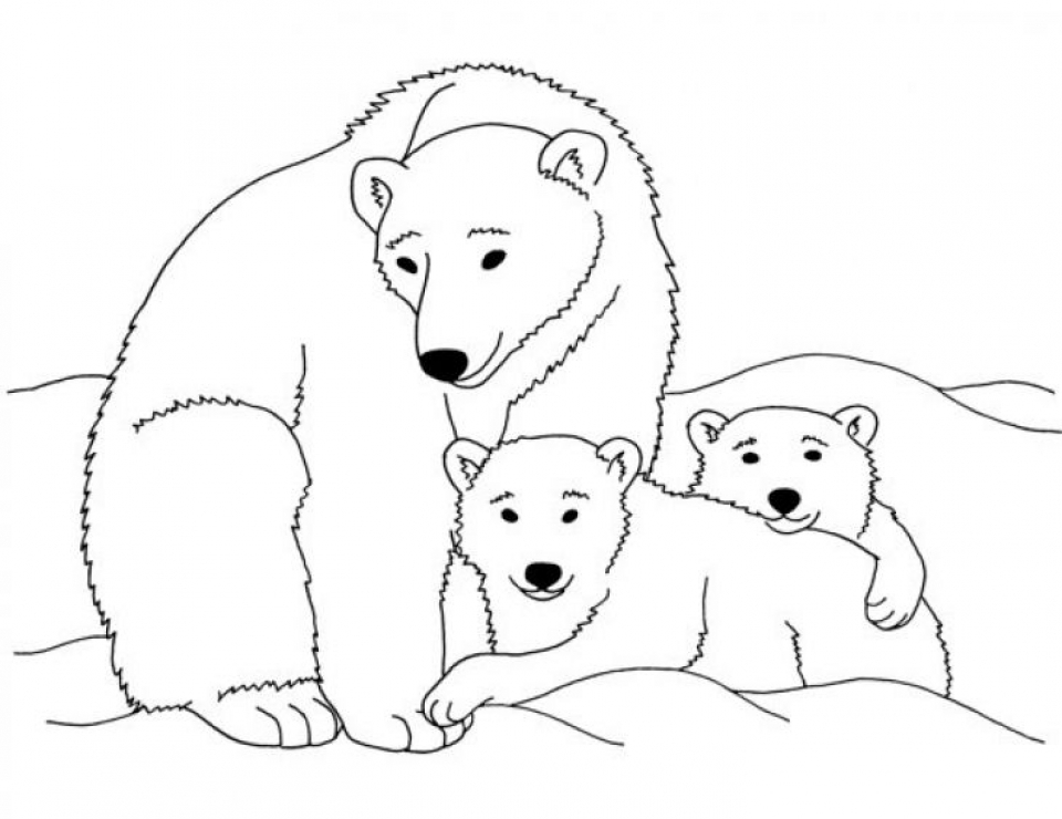 Get this polar bear coloring pages free to print j6hdb for Free bear coloring pages