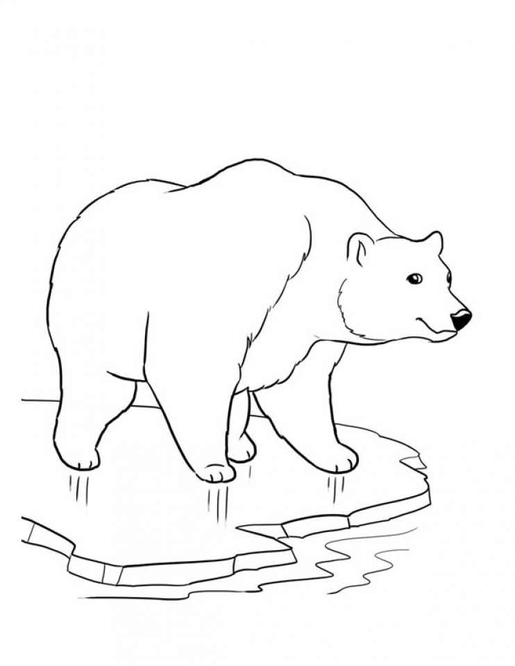 coloring page polar bear - get this printable toddler coloring pages online 30493