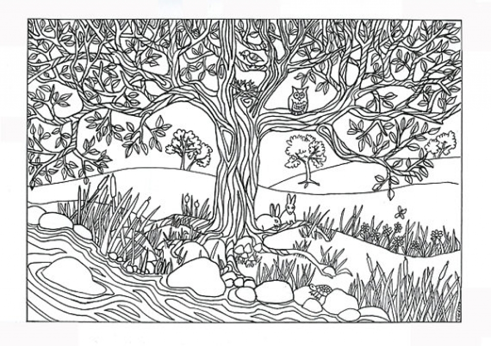 Get This Preschool Printables of Nature Coloring Pages Free b3hca !