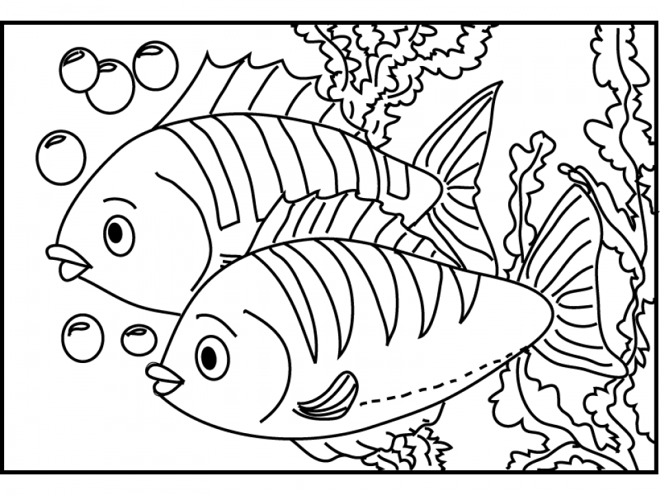 20+ Free Printable Fish Coloring Pages - EverFreeColoring.com