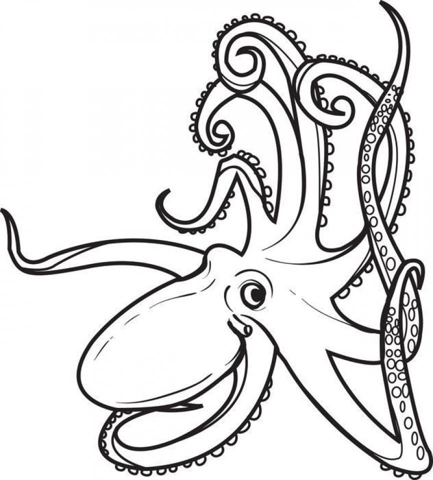 Get This Online Octopus Coloring Pages A9m0j