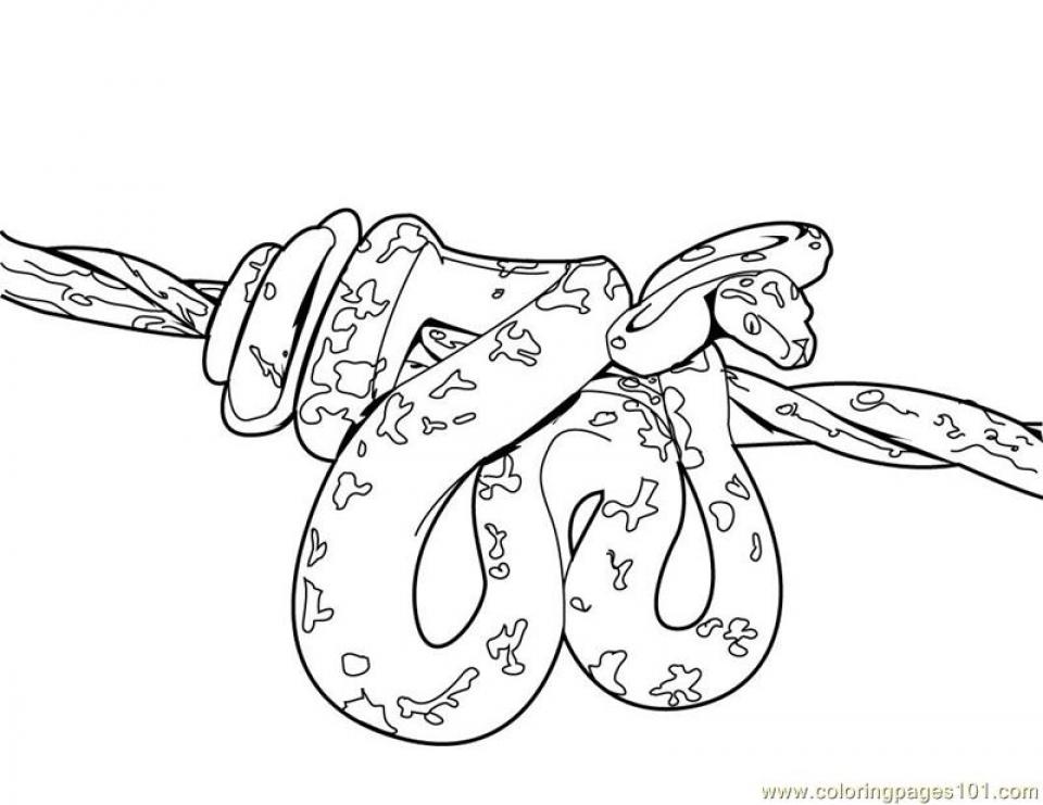 Venomous Snakes Coloring Pages