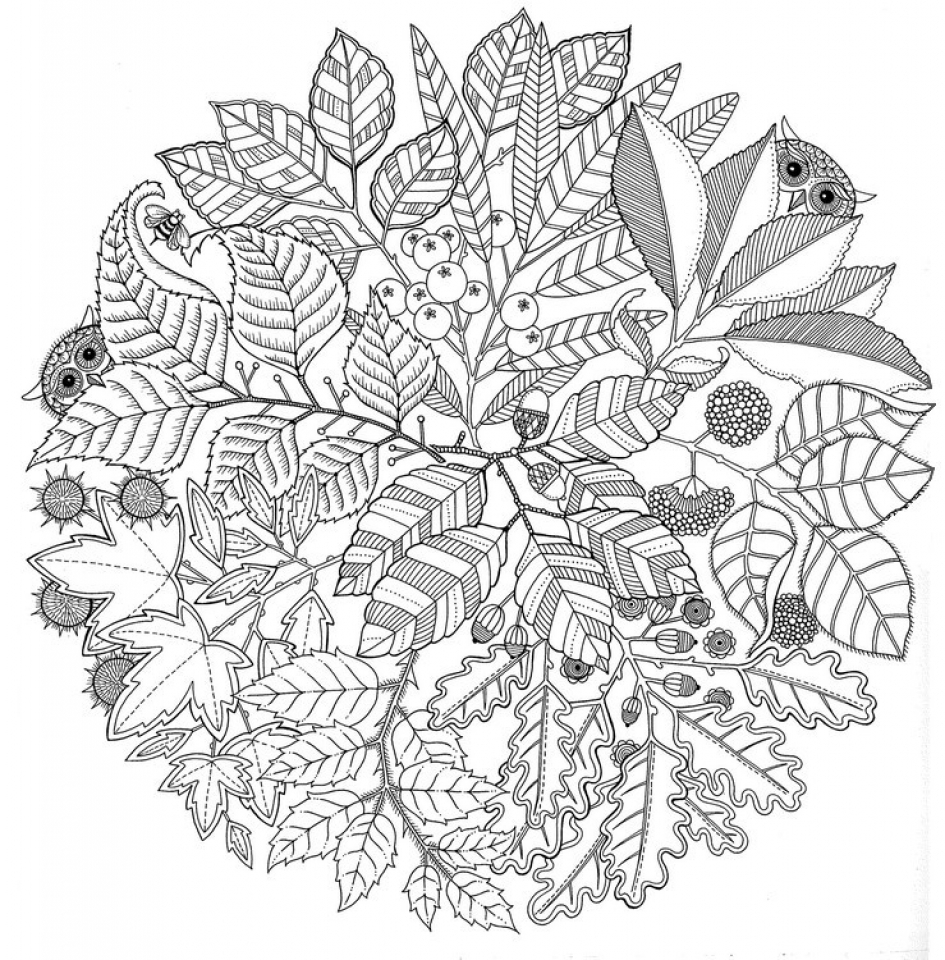 Coloring page autumn - Printable Autumn Coloring Pages For Adults 55cv67