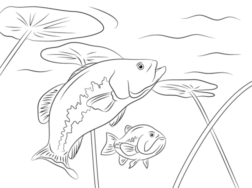 Get this printable fish coloring pages online 711877 for Color pages of fish
