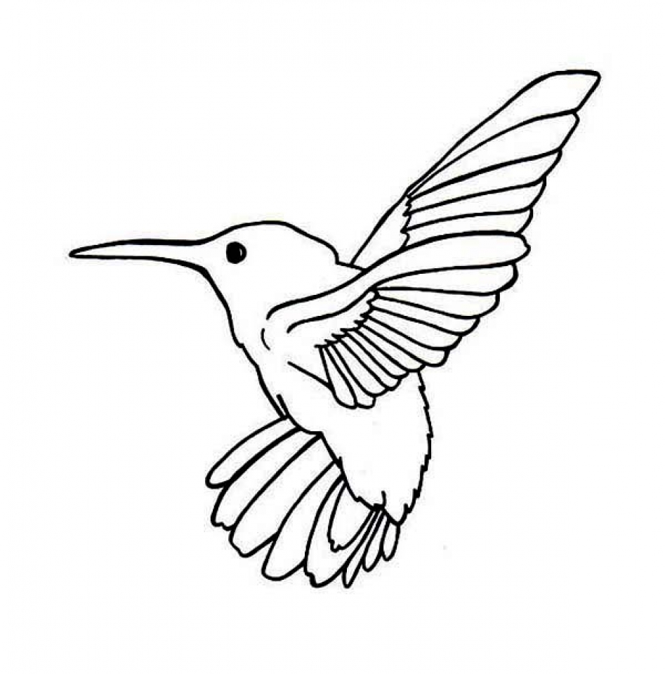 Get This Printable Hummingbird Coloring Pages Online 89391