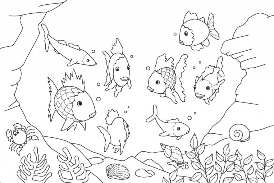 rainbow fish coloring pages for preschoolers 51635 - Rainbow Fish Coloring Pages