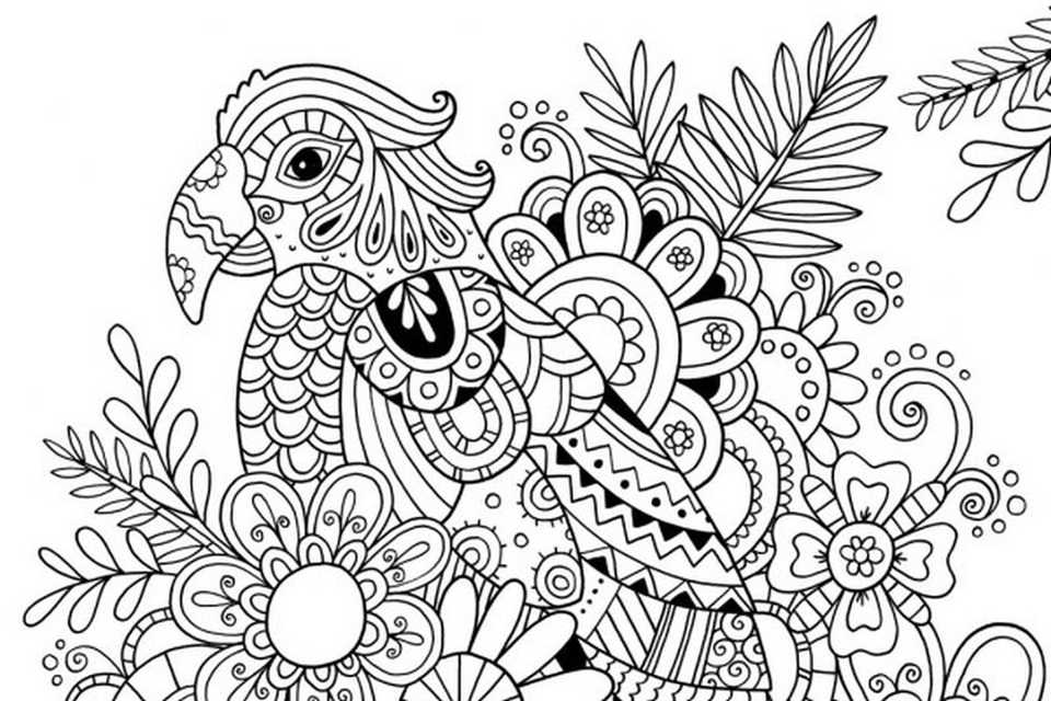 Online summer printable coloring pages for adults 89210