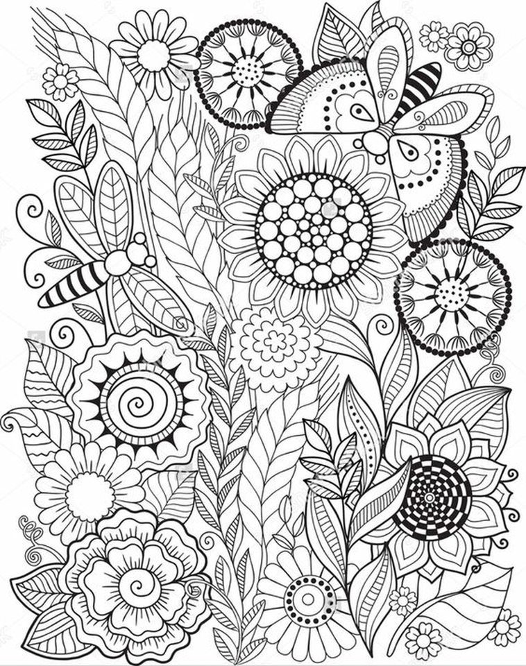 Get this summer coloring pages to print out for adults for Coloring pages to print for adults