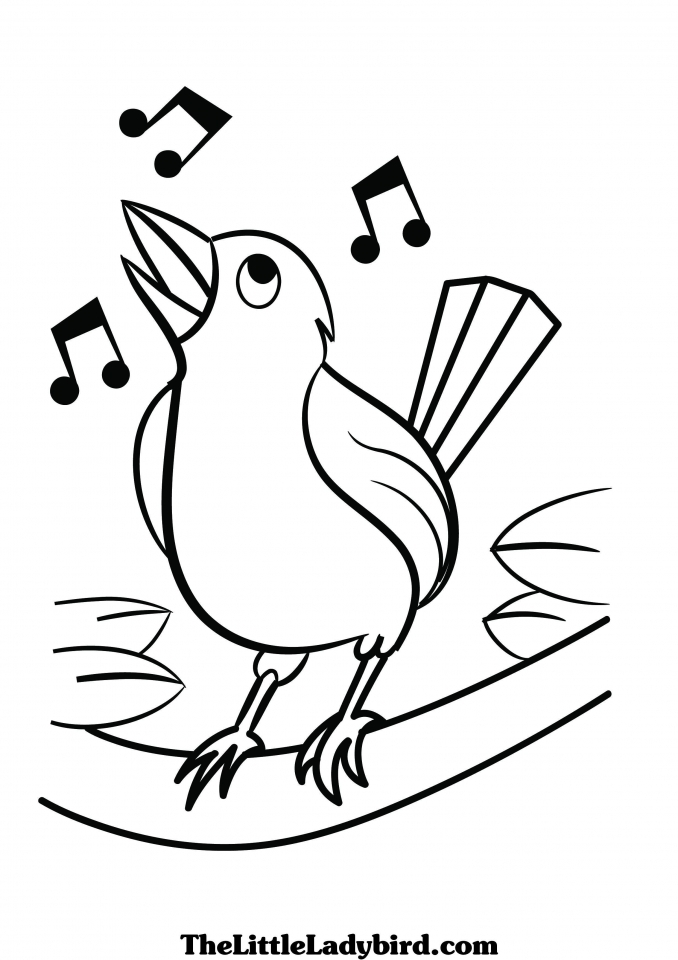 online bird coloring pages - photo#23