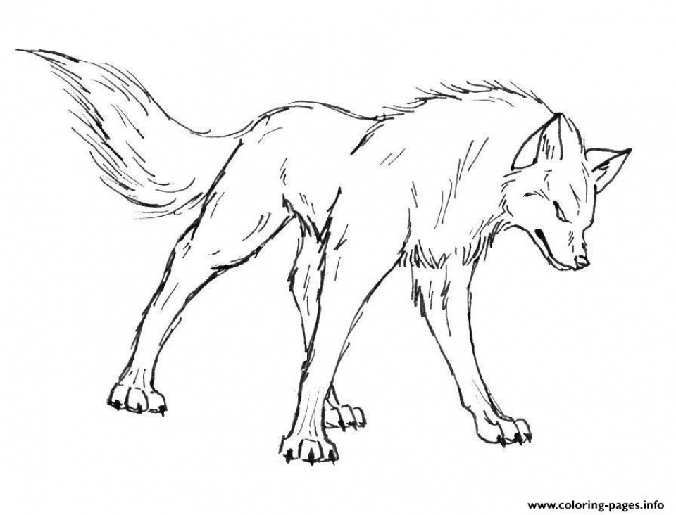 Coloring Pages of a Wolf   56319