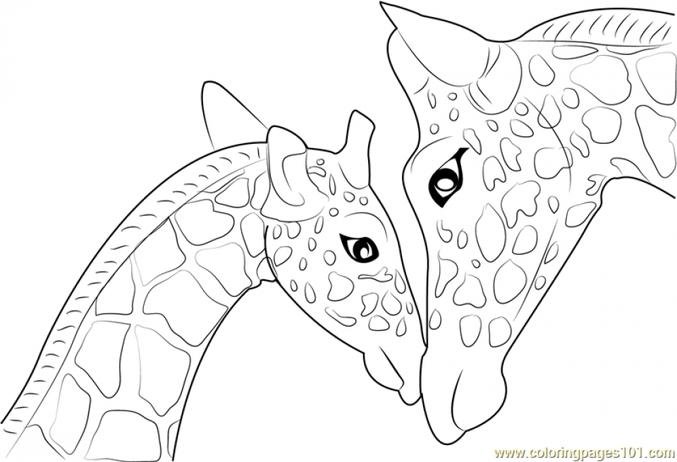 kids n fun coloring pages of giraffe