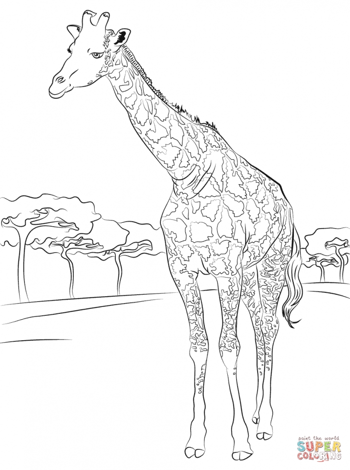 Get this giraffe coloring pages hard printables for older for Giraffe coloring pages to print