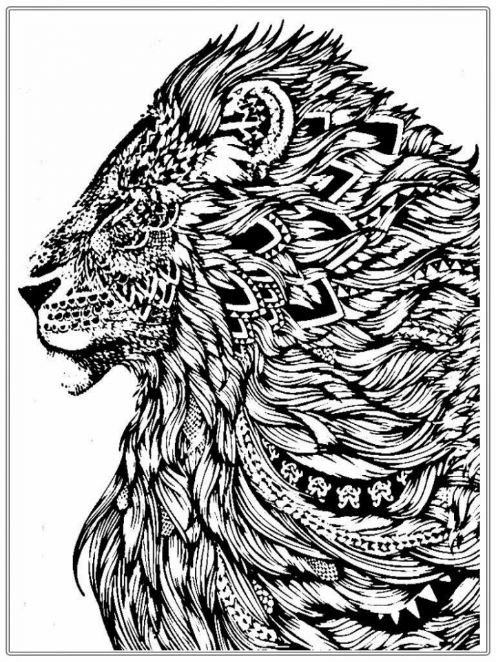 Get This Lion Coloring Pages for Adults Printable 64831