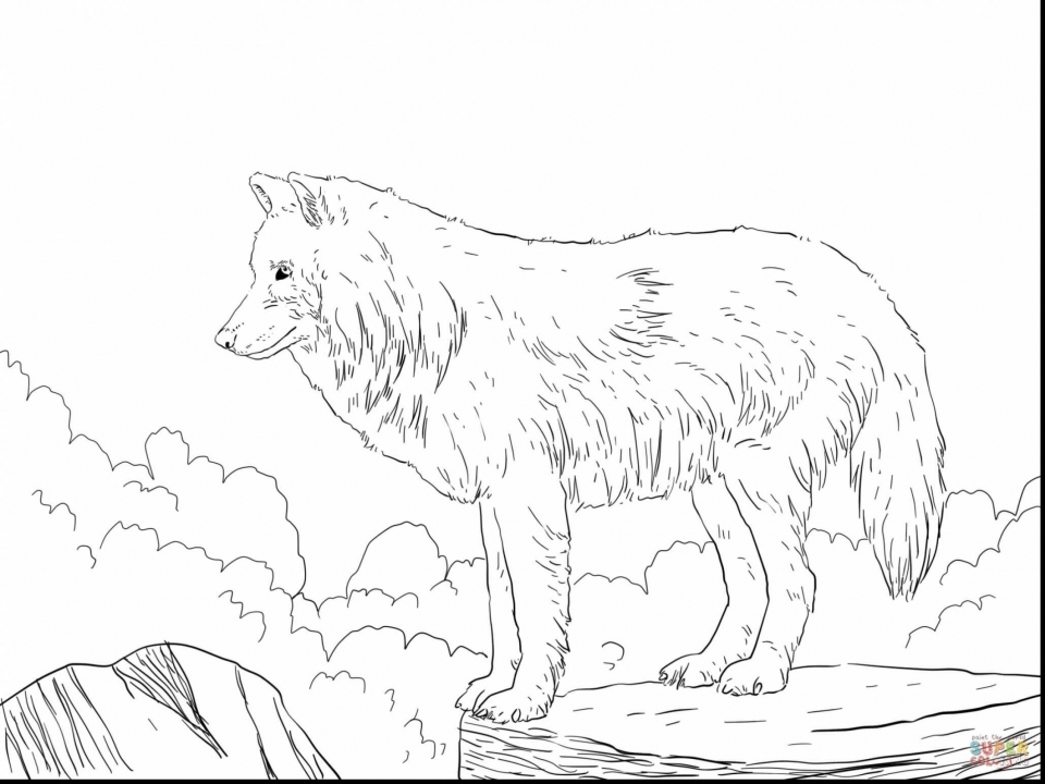 indian and wolf coloring pages - photo#41