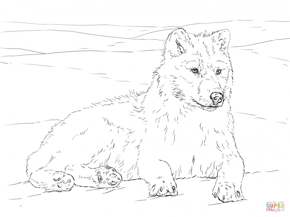 realistic wolf coloring pages for adults free printable 98601 - Wolf Coloring Pages For Adults