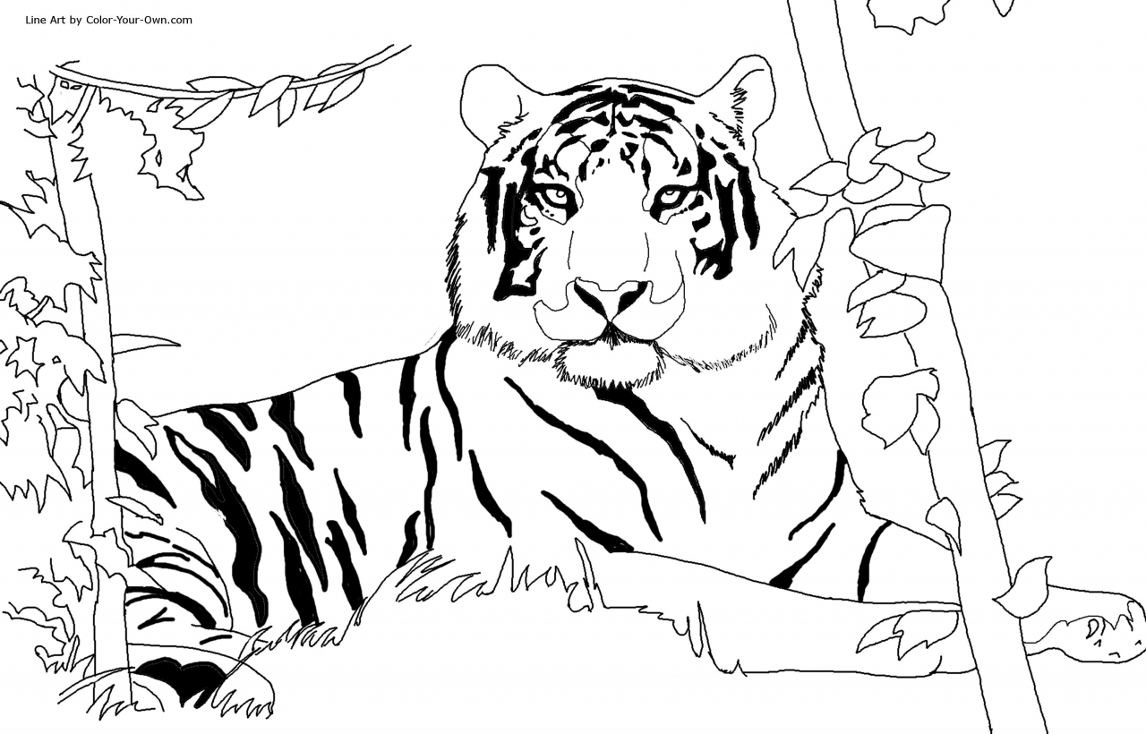 Get This Tiger Coloring Pages To Print Out 50731