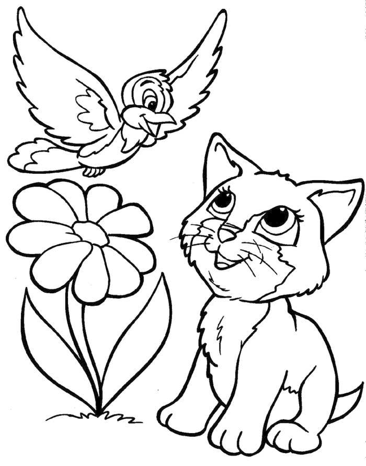Get this kitten coloring pages kids printable 3sda1 new for Kittens coloring pages to print
