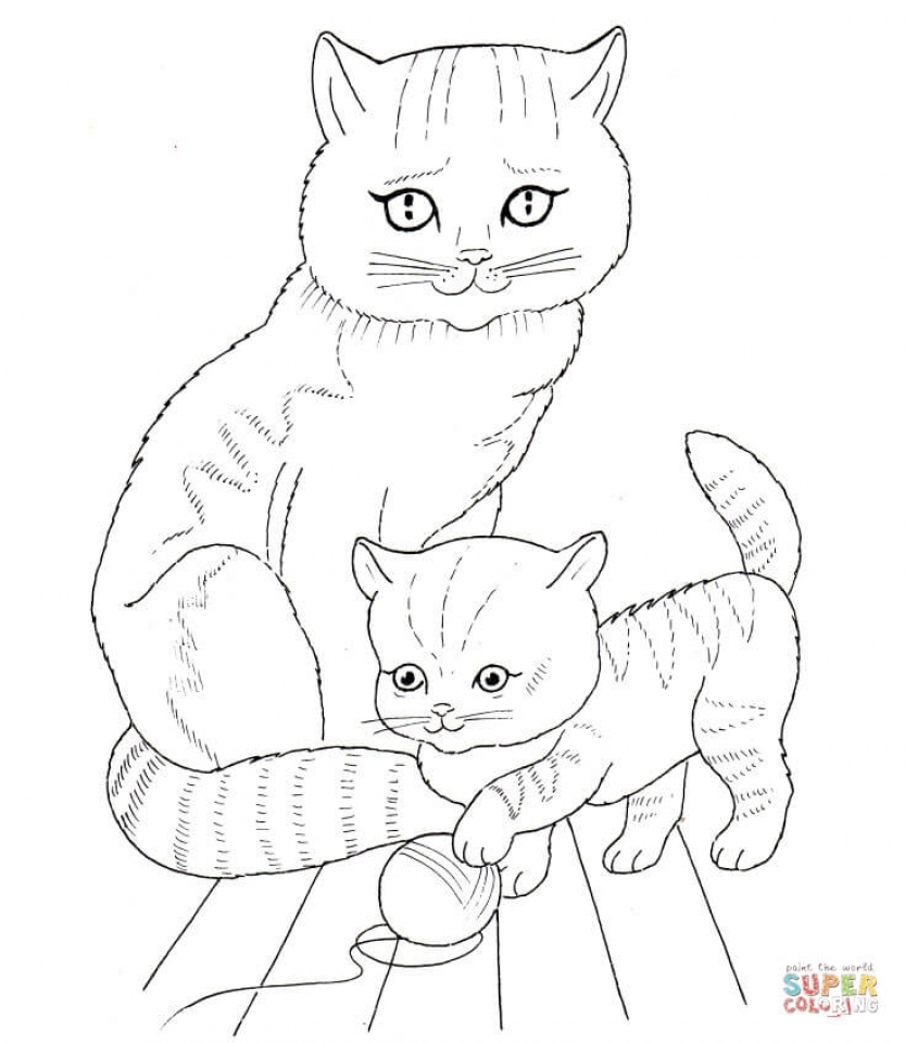 This is a picture of Declarative Coloring Page Of Baby Kitten