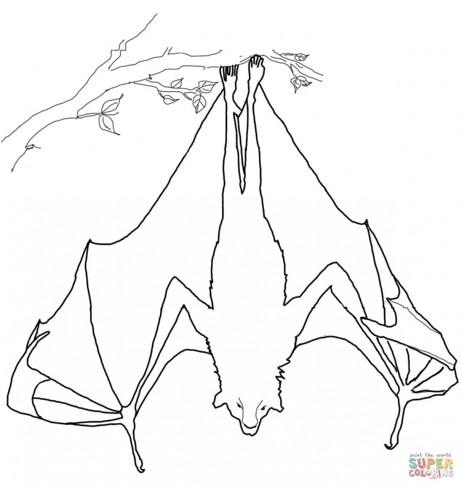 Get This Bat sleeping upside down coloring page 14416 !
