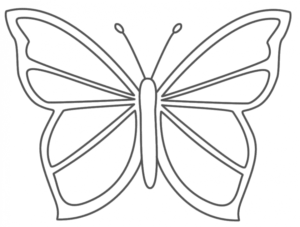 Get This Butterfly Coloring Pages For Preschoolers 8gh51