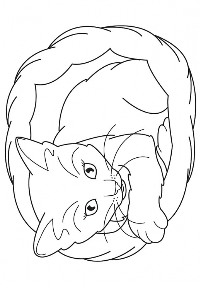 Get This Cat And Kitten Coloring Pages Free To Print 67491
