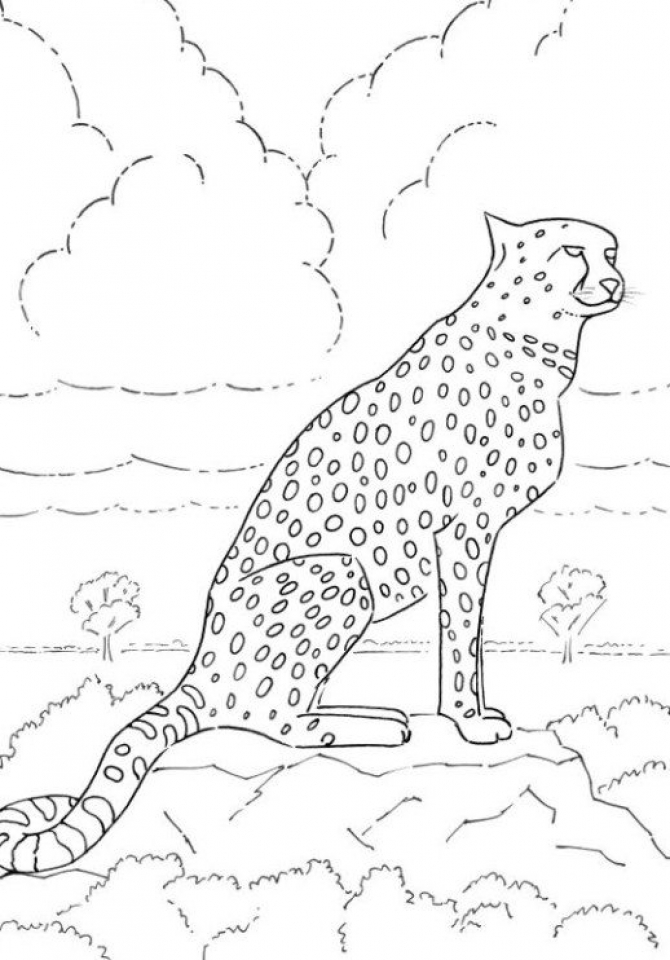 Favori The Best of Animal Coloring Pages Printable - Get them for free! EE87