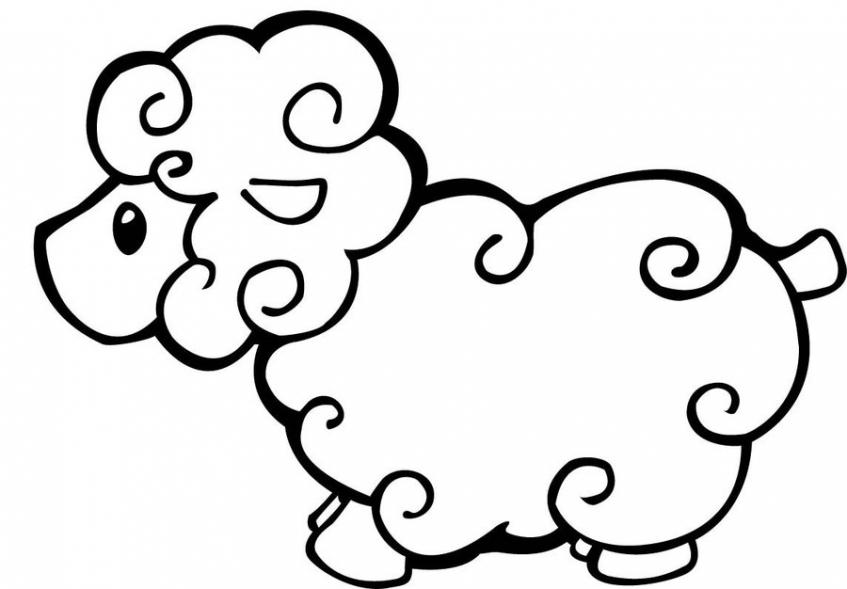 Coloring pages of sheep   taq5b
