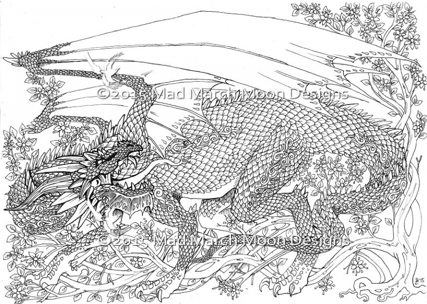 Get This Dragon Coloring Pages For Adults Free Printable Ta2n4