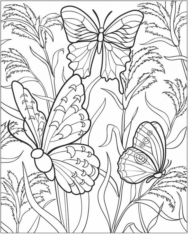 picture regarding Free Printable Butterfly Coloring Pages Adults referred to as Consider This No cost Printable Butterfly Coloring Webpages for Grownups