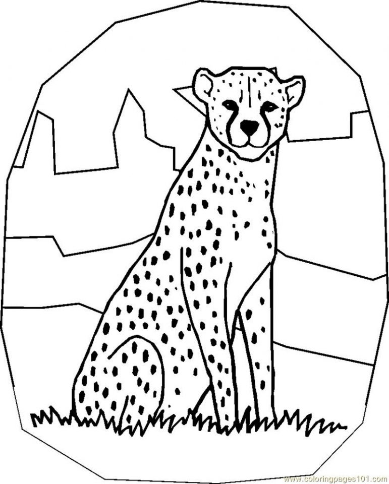 photo regarding Cheetah Printable named Purchase This Cost-free Printable Cheetah Coloring Webpages 72xbp !