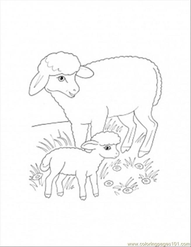mother sheep and lamb coloring page 840jt - Lamb Coloring Page