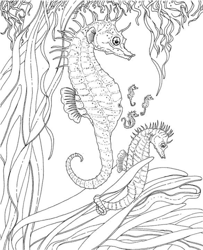Get this ocean coloring pages free 2756g for Free ocean coloring pages