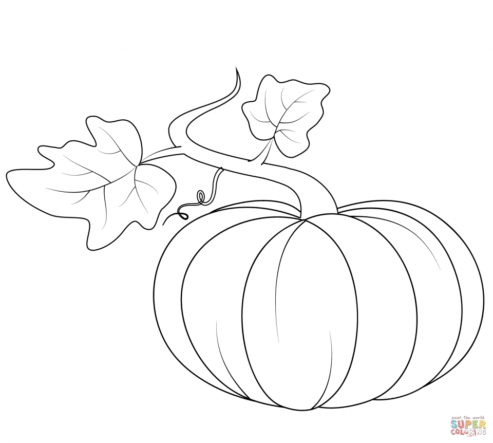 pumpkin coloring pages kids printable 73619 - Pumpkin Coloring Pages Kids