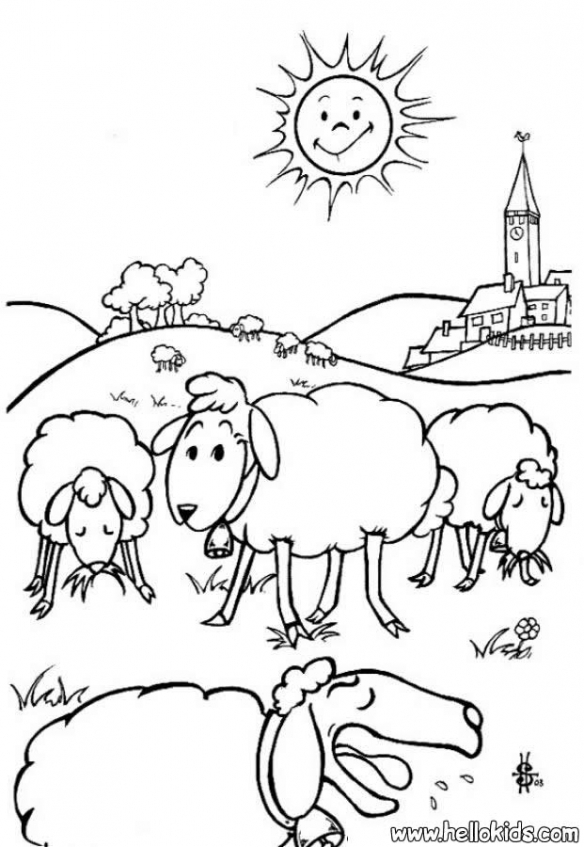 sheep coloring pages free vxu6l - Sheep Coloring Pages