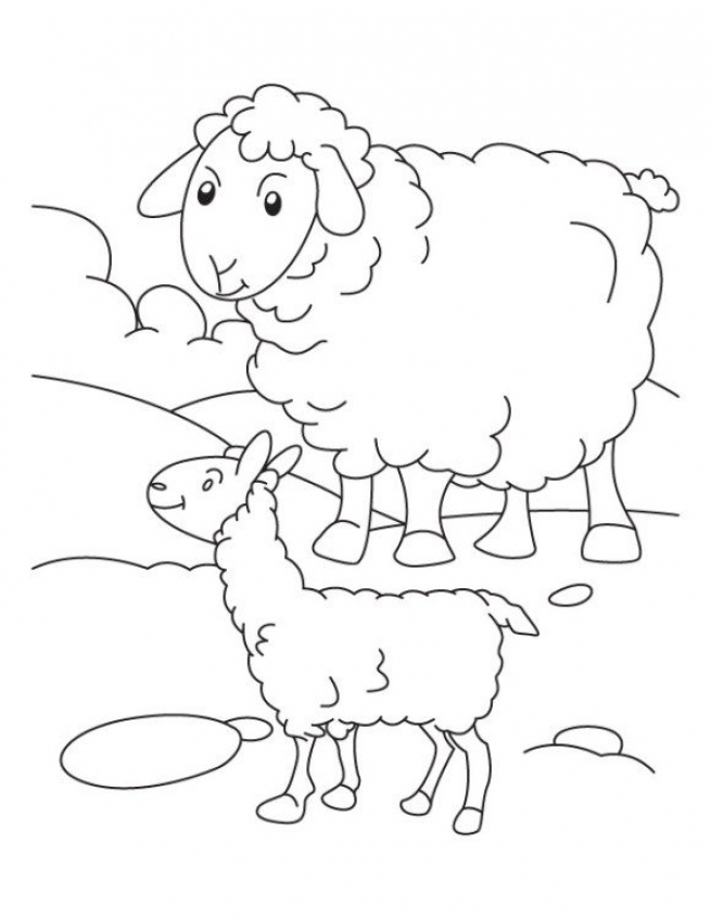 sheep coloring pages to print - free printable coloring pages for