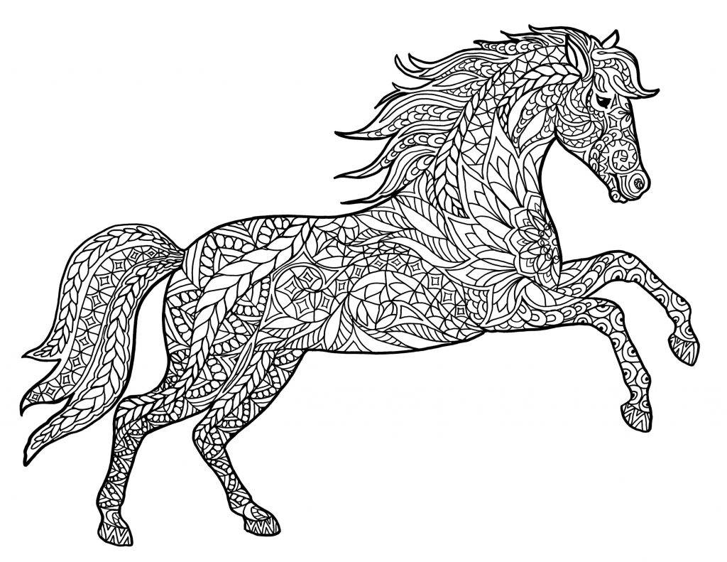 Get This Adult Coloring Pages Animals Horse 1