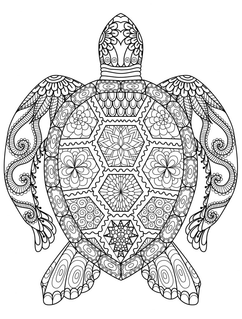 Get This Adult Coloring Pages Animals Turtle 1