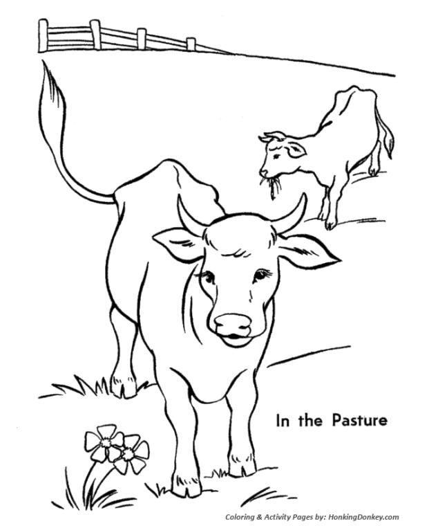 Get This Cow Coloring Pages Printable Cow Grazing In The Pasture