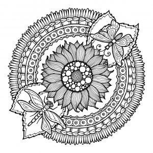Adult Coloring Pages Patterns Flowers Free Printable lrs9