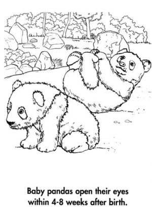 Baby Panda Playing Happily Coloring Page