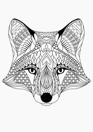 Fox Coloring Pages for Adults Printable – 91abn