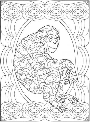 Monkey Coloring Pages for Adults – 93102
