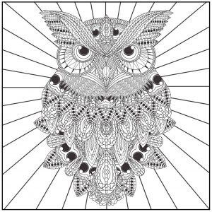 Owl Adult Coloring Pages Free Printable by65