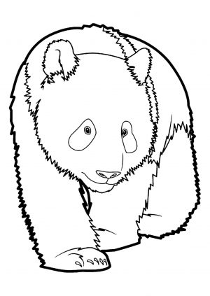 Panda Coloring Pages Free to Print