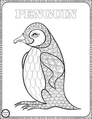 Penguin Coloring Pages for Adults to Print Out – 67291