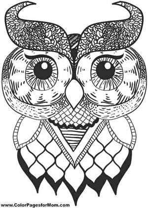 Printable Owl Coloring Pages for Grown Ups lo68